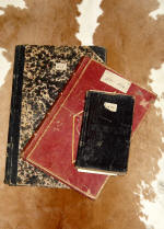 Photo of the diaries